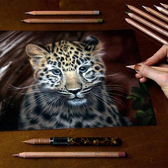 Caran D'Ache ดินสอไม้กันน้ำ 20 สี LUMINANCE 6901 #6901.720